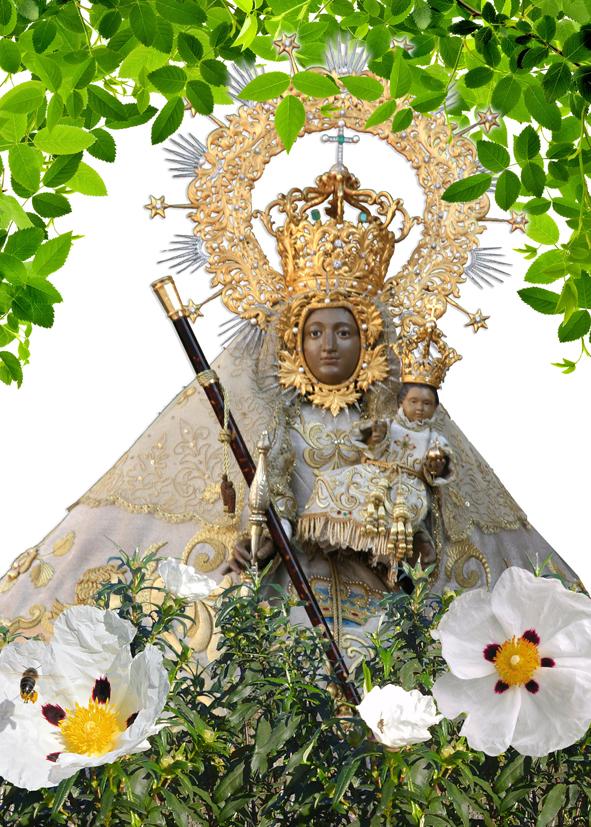 Virgen de Argeme -Coria 2012-